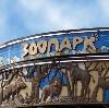 Зоопарки в Нижнем Новгороде