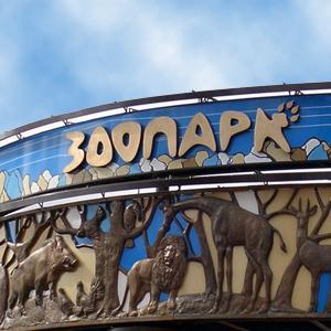 Зоопарки Нижнего Новгорода